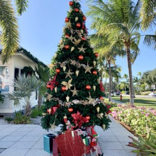 Christmastime in Naples, FL